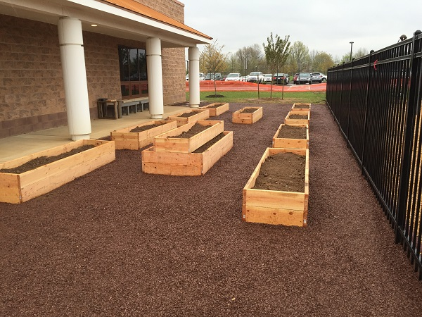 The beds are ready for the flowers and veggies to come (do they grow balsamic vinaigrette to go with it?)